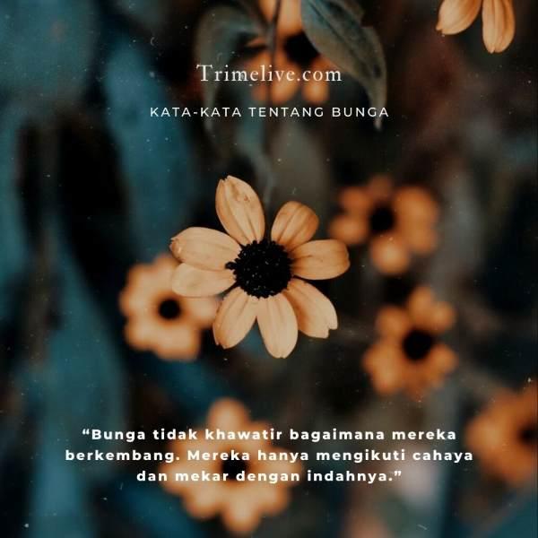 Kata-kata Bunga Singkat